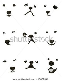 dog faces, http://www.shutterstock.com/
