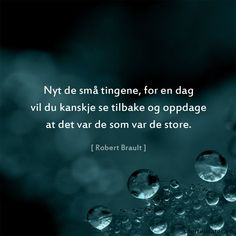 The little things - Quoted quotes - Enjoy the little things, for one day you might want to look back and discover that they were the big ones. Funny Quotes About Life, Life Quotes, Proverbs Quotes, Little Things Quotes, Looking Back, Norway, Poems, Language, Positivity