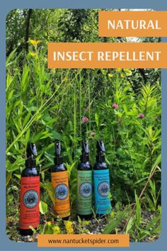 Whether it's camping, hiking, bike rides, outdoor sports, going for a walk, gardening or just playing in the backyard, you can rely on Nantucket Spider's natural bug sprays to protect you from insects, ticks and bug bites. Our products are cruelty free, natural and safe for the whole family, including your dog. #gardening #outdooressentails Best Insect Repellent, Natural Tick Repellent, Fly Repellant, Sustainable Gifts, Sustainable Living, Bug Spray For Kids, Essential Oil Bug Spray, Natural Bug Spray, Bike Rides