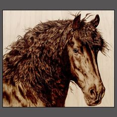 pyrography horse | HORSE ART by Julie Bender, www.JulieBender.com Julie does pyrography ...