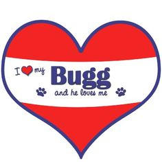 Bugg Dogs on Pinterest | Boston Terrier Pug, Bugg Puppies and Brindle ...