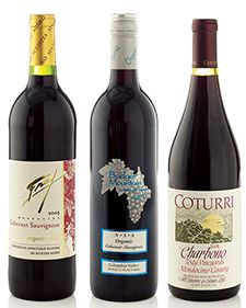 We tasted 16 organically made red wines to find three bottles that went beyond just drinkable.