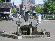 Ganzen Geesje in Coevorden in de nabijheid van het Kasteel van Coevorden.