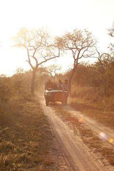 Go on Safari, not the touristy, wrapped in cotton wool type. The Places Youll Go, Great Places, Places To See, Kenya, Safari Jeep, The Lion Sleeps Tonight, Safari Adventure, Out Of Africa, African Safari