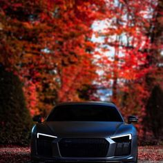 autumn with this beast is such a pleasure. - - autumn with this beast is such a pleasure. /RS 7 BMW Parts vs Aftermarket BMW Auto PartsAudi The red monster from the sauna club autumn with this beast is such a pleasure.… autumn with this beast is . Luxury Sports Cars, Top Luxury Cars, Cool Sports Cars, Sport Cars, Audi Sq5, Bmw M Power, Bmw Autos, Lux Cars, Lamborghini Cars