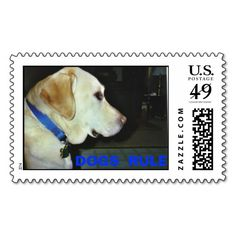 >>>Smart Deals for          	Animal Rescue Series Postage Stamps           	Animal Rescue Series Postage Stamps you will get best price offer lowest prices or diccount couponeShopping          	Animal Rescue Series Postage Stamps Online Secure Check out Quick and Easy...Cleck Hot Deals >>> http://www.zazzle.com/animal_rescue_series_postage_stamps-172514015991281137?rf=238627982471231924&zbar=1&tc=terrest