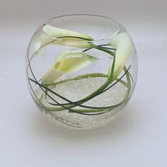 Google Image Result for http://www.lavendersoflondon.com/images/3529/1.jpg