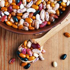 Fiber from beans in the diet can bind to cholesterol-laden bile salts to lower your cholesterol.