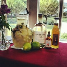 The Caledonia Cooler graced the center bar during Celebrate Vermont Festival's Craft Spirit Cocktail Competion at The Stoweflake Resort.   Representing Caledonia Spirits with a Sumptuous Syrups of Vermont signature craft cocktail.   Barr Hill Gin, Fresh Organic Lime Juice, Sumptuous Ginger Syrup, Urban Moonshine Citrus Bitters, Cucumber, Chocolate Mint and Soda.