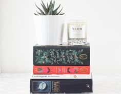4 Books To Read During The Festive Season — From Roses