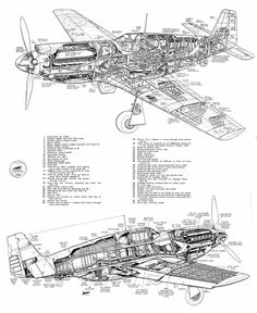 During WWII, as far as I'm aware, the RAF never did develop a long range fighter in the style of the American Mustang (also fitted later with the RR. Navy Aircraft, Ww2 Aircraft, Military Aircraft, Airplane Drawing, P51 Mustang, Technical Drawing, Technical Illustration, Military Photos, Hunting