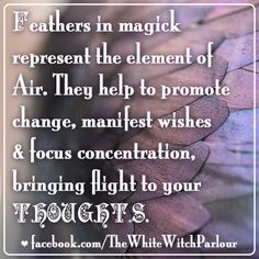 feather, magic, magick, spell, smudge, fan, sage, witch, wicca, book of shadows #whitewitchparlour facebook.com/thewhitewitchparlour Wicca Witchcraft, Magick Spells, Healing Spells, Eclectic Witch, Witch Spell, White Magic, Practical Magic, Believe In Magic, Spirit Guides