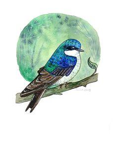 Tree Swallow watercolor by Anastasy Siilin