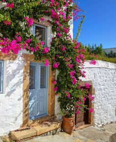 Travel Around The World, Around The Worlds, Collor, Greece Islands, Bougainvillea, Greece Travel, Decoration, House Colors, Exterior
