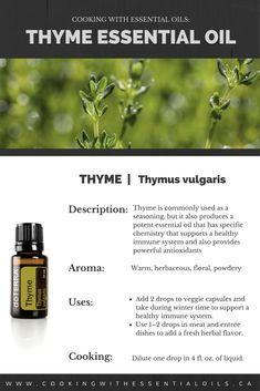 This post will explore the uses and benefits of doTERRA Thyme essential oil. Thyme EO is commonly used as a seasoning, but it also produces a potent essential oil that has cleansing and purifying effects for the skin. #thyme #doterra #essentialoils