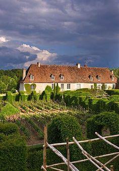 Priory vineyard, Notre-Dame D'Orsan, France│Clive Nichols