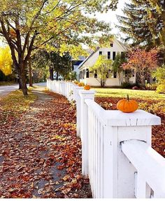 80 Elegant Ways to Decorate for Fall - The Glam Pad Fall Thanksgiving Halloween Autumn Decorating ideas outdoor front door interior design tablescapes table settings pumpkins flowers White Picket Fence, White Fence, Autumn Decorating, Decorating Ideas, Autumn Aesthetic, Best Seasons, Autumn Inspiration, Autumn Ideas, Autumn Home