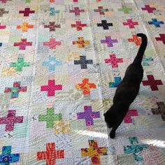 #favquiltivemade is easily my plus quilt. | Flickr - Photo Sharing! Rachel (wooden spoon)