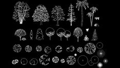 Bloques AutoCAD Gratis - Librerias de árboles, arbustos, plantas, en alzado y planta