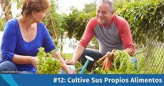 Cultivar sus propios alimentos es un medio práctico de favorecer su salud, y las frutas y vegetales cultivados en huertos son los alimentos más frescos y ricos en nutrientes que existen. https://articulos.mercola.com/sitios/articulos/archivo/2018/01/12/cultive-sus-propios-alimentos.aspx?utm_source=espanl&utm_medium=email&utm_content=art1&utm_campaign=20180112&et_cid=DM178398&et_rid=181213774