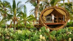 Is the treehouse the pinnacle of sustainable living? - CNN.com