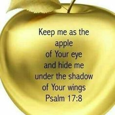 Keep me as the apple of Your and hide me under the shadow of Your wings ~ Psalm Biblical Quotes, Prayer Quotes, Bible Verses Quotes, Bible Scriptures, Spiritual Quotes, Faith Quotes, Prayer Verses, Religious Quotes, Positive Quotes