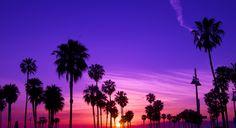 Venice Sunset | por Tyler Merbler