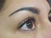 Eyebrow tattoo after one week tattoos eyebrow for Tattoo shops in winston salem nc