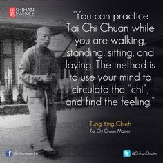 175 Best Tai Chi / Qigong images in 2017 | Marshal arts, Tai