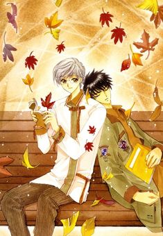 Yukito-san and Toya from Cardcaptor Sakura