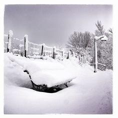 #myinstagram365proyect día128 no podía ser de otra manera, la foto de hoy, de #aguilardecampoo y su #nieve #igerspalencia #igerscyl #palencia