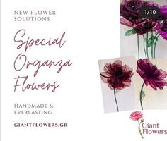 Giant Flowers, Large Flowers, Organza Flowers, Peonies, Hotel Decor, Silk Flower Arrangements, Floral Wall, Place Card Holders, Artificial Flowers