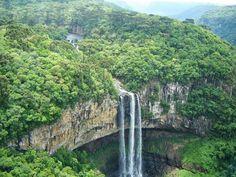 Amazon Rainforest, Brazil
