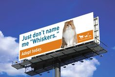 Funny billboard for the Animal Humane Society