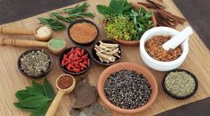 Treating The Whole Person-what an herbalist or health coach asks and why.