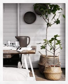 Pots & Planters | Plants in baskets | Remember water barrier! | via @pellahedeby Instagram