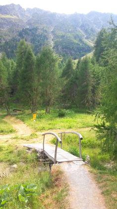 Umgebung des Lai da Palpuogna, Bergün / Preda, Albulapass