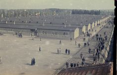Former prisoners walking along the main street of the newly liberated Dachau concentration camp, May 1945.