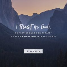 4 In God, whose word I praise, in God I trust; I shall not be afraid. What can flesh do to me? (Psalms 56:4 ESV)