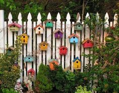 Colorful Bird Houses on Wooden Fence
