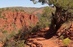 RED ROCK STATE PARK (Sedona, AZ) - At 286 acres, the activity possibilities at Red Rock State Park are endless and range from hiking and biking to horseback riding to wildlife viewing.