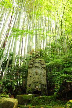 Hokokuji Temple - Japan