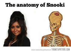 The anatomy of Snooki -
