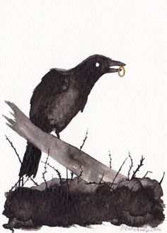 Raven and Ring - ACEO - Original Art Card Illustration available on Etsy Bald Eagle, Raven, Original Artwork, I Shop, Art Pieces, Finders Keepers, Watercolor, The Originals, Drawings