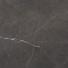 Pietra Grey Honed. A striking marble popular for its delicate white vein contrasted agains the dark grey background.