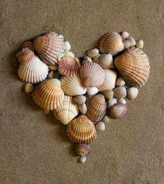 .Seashell heart