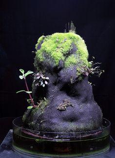 Mikael est un suédois passionné d'orchidées. Il a développé et mis au point différents matériaux très résistants (...