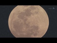 ScienceCasts: A Summer of Super Moons http://www.iflscience.com/space/first-%E2%80%9Csuper-moon%E2%80%9D-year-will-be-visible-july-12