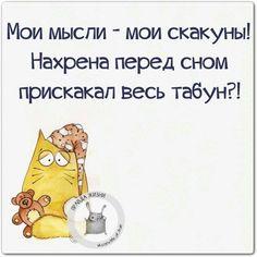 ":o) Неизменный позитив в теме ""Веселые картинки"" http://forum.cofe.ru/showthread.php?t=151251"