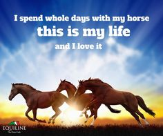 I spend whole days with my horse. This is my life, and i love it!